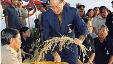 Photo of Autosufficienza Economia Thailandia, il dono di Rama IX
