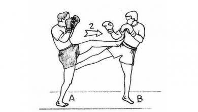 Photo of Muay Thaï : les techniques de la boxe thaï avec illustrations