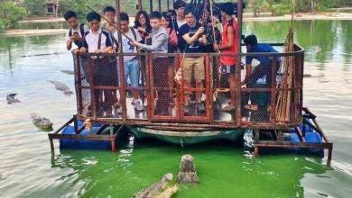 Photo of A crocodile farm closed in Pattaya because of shocking pictures!