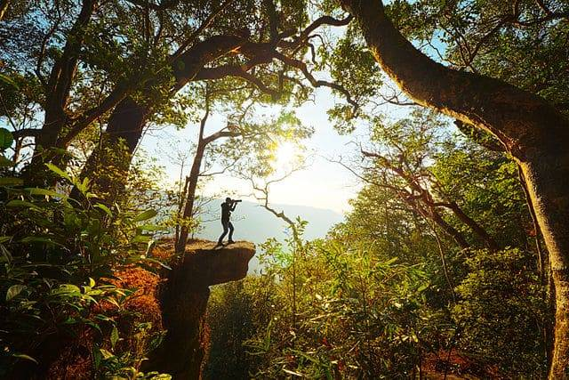 Photo of Visiter le parc national de Khao Yai en Thaïlande, guide complet