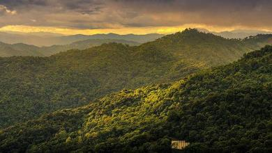 Photo of Doi Suthep Pui National Park in Chiang Mai Thailand