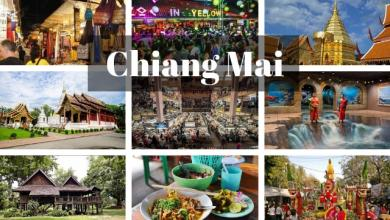 Photo of 7 Best things to do in Chiang Mai Thailand